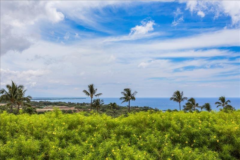 Villas at Mauna Kea 13
